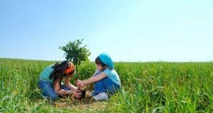 Hôm nay con hỏi bố môi trường là gì? Tại sao lại phải bảo vệ môi trường?