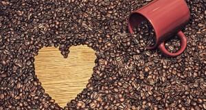Câu chuyện hạt cà phê