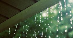 Câu chuyện của cơn mưa