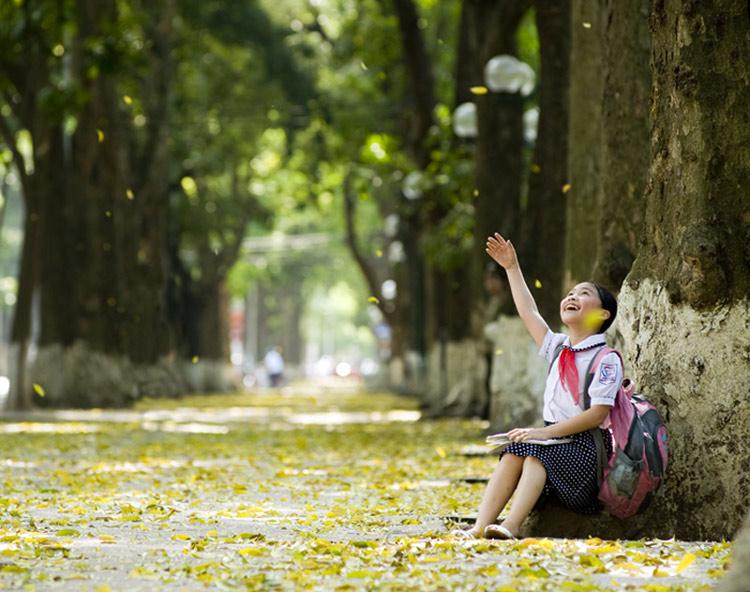 hanoi-autumn