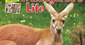 A Kangaroo's life (Ellen Lawrence, Bearport Publishing, 2012)