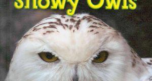 Snowy Owls (Roman Patrick, Gareth Stevens Publishing, 2010)