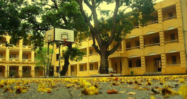 Ngôi trường xanh