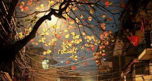 Thiên nhiên mùa thu