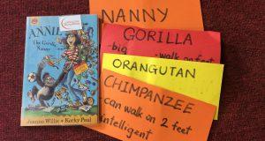 "Buổi đọc sách tiếng Anh ""Annie the gorillia nanny"" (Jeanne Willis – Korky Paul, Orchard Books, 2004) – Ecopark"