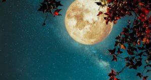 Đêm hội của bầu trời